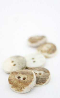 Stag Antler Buttons (6) Small